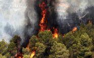 ۱۰ هکتار از منابع طبیعی گیلان طعمه حریق شد