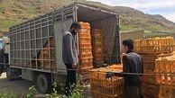 توقیف خودروی حمل غیربهداشتی مرغ زنده در سرپلذهاب