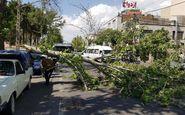 هشدار وزش بادهای شدید در ۱۱ استان