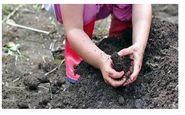 خاک بازی کودکان چه فوایدی دارد؟