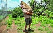 رفاقت شگفت انگیز یک مرد با حیوانات وحشی