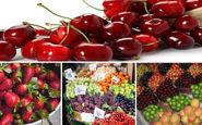 افت ۱۰درصدی قیمت میوه در بازار
