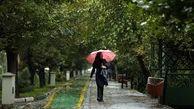 رگبار باران و وزش باد در برخی نقاط کشور