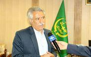  پیش بینی کاشت بیش از 40 هکتار زعفران در اراضی کشاورزی شهرستان کرمانشاه