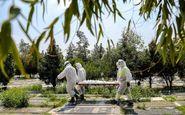 آمار کرونا در ایران/ فوت ۱۷۸ نفر در شبانهروز گذشته