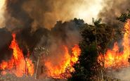 سومین پارک هم در تهران آتش گرفت / سریالی بودن آتش سوزی ها عمدیست؟!