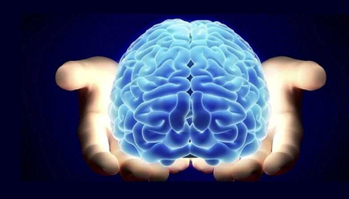 این عادات سلامت مغز را به خطر می اندازند