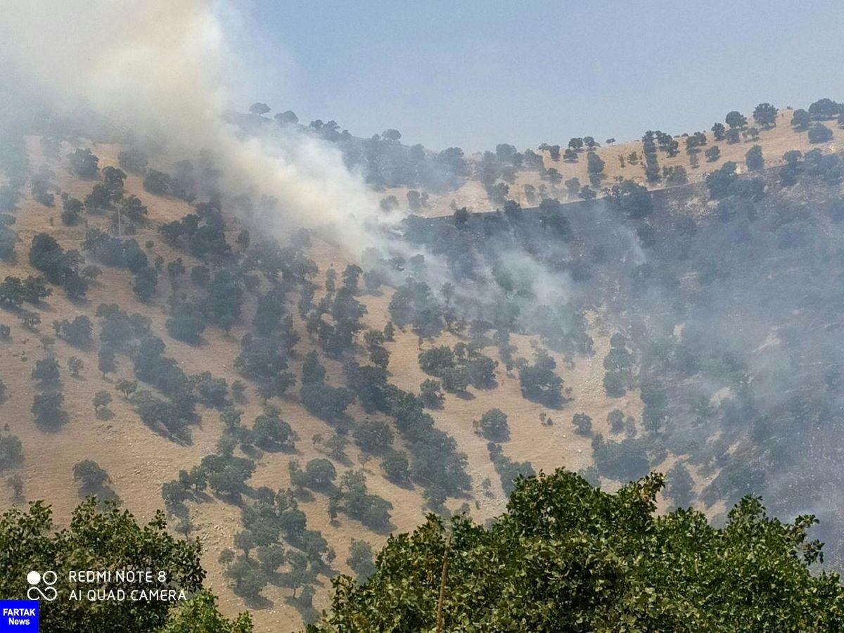 تشکیل کمیته مدیریت بحران برای مهار آتش سوزی در منطقه حفاظت شده بوزین مرخیل پاوه