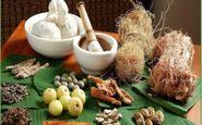 گیاهان ضد دیابت را بشناسید
