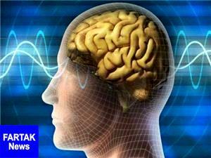 عادات مضر برای مغز