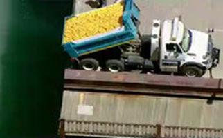 ۶۳ هزار جوجه اردک پلاستیکی در رودخانه شیکاگو!