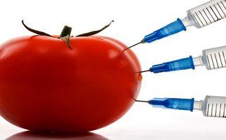 افزایش چشمگیر سرطان، ارمغان محصولات کشاورزی تراریخته + فیلم