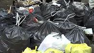 جمع آوری زباله در مناطق گردشگری ارمنستان + فیلم
