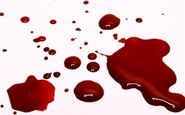 عربده کشی صاحب قهوه خانه در فضای مجازی، قتل او در دنیای واقعی