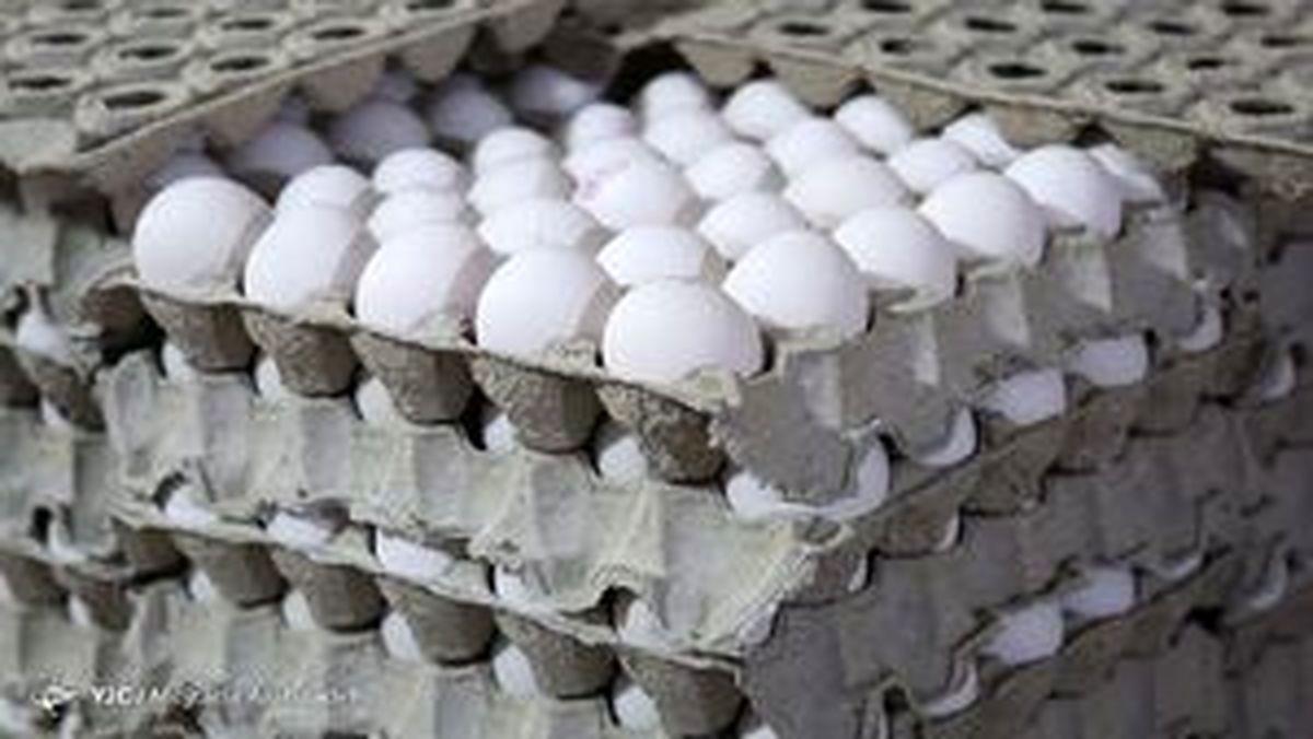 کلاف سردرگم درج قیمت روی تخممرغ!