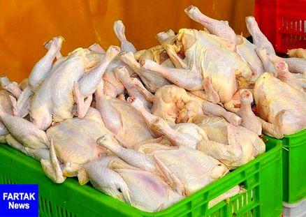 دادستان تهران: قیمت هر کیلو گوشت مرغ 11500 تومان است