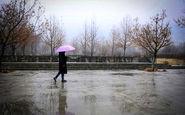 پیش بینی آب و هوا/رگبار باران در نقاط مختلف