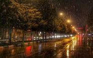 پیش بینی آب و هوا/امروز و فردا کدام استان ها بارانی هستند؟