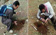 کاشت بذر بلوط توسط کوهنوردان پاوه ای