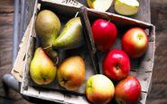 این میوهها برای کبد خطرناک هستند