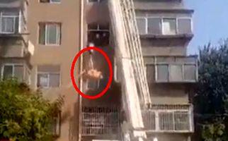 شیوه عجیب انتقال مرد ۲۲۵ کیلویی به آمبولانس +فیلم