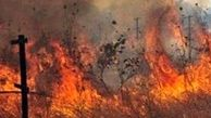 جویندگان عسل باعث آتش سوزی بیش از ۳ هکتار از اراضی محمودی میناب شدند