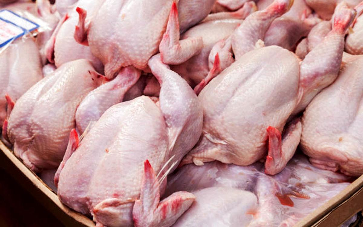 توزیع روزانه هزار تن مرغ با قیمت مصوب / ارزانی در راه است؟