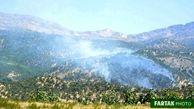 تصاویری ازآتش سوزی درخت های بلوط( جنگلهای ) دالاهو