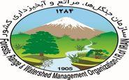 سرپرست جدید سازمان جنگلها منصوب شد