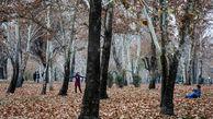 یکی دیگر از باغ های قدیمی شمال تهران بوستان عمومی شد