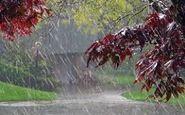 بارش پراکنده باران در شمال کشور