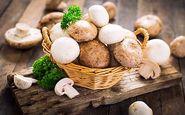 علائم اولیه مسمومیت ناشی از مصرف قارچ سمی را بشناسید