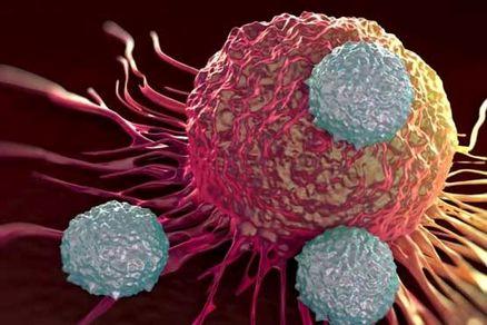 با 3 عامل پیشگیری از سرطان آشنا شوید