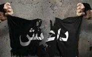 متلاشی شدن شبکه داعشی در عراق