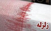 زلزله ۴.۹ ابوموسی را لرزاند