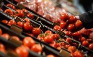 کاهش قیمت گوجه فرنگی از ۲۵ آذر/ ۵۳ هزار تن سیب و پرتقال برای شب عید ذخیره شد