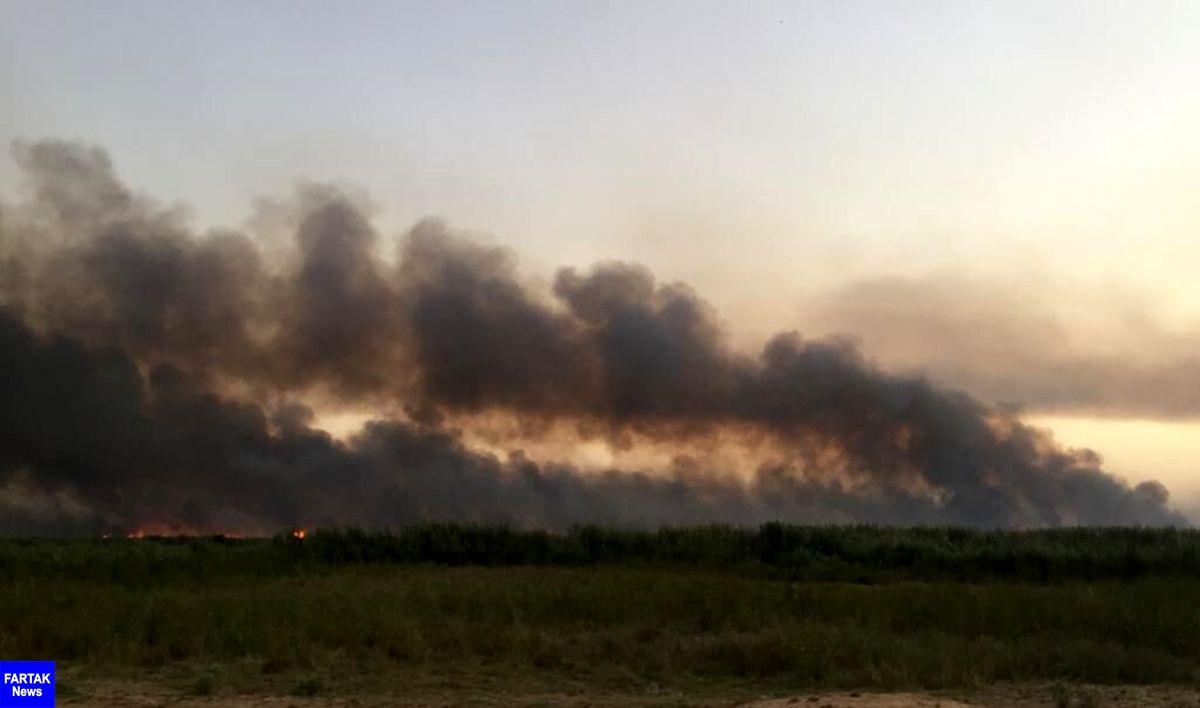 آتش سوزی در سه هزار هکتار از هورالعظیم