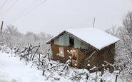 هواشناسی ایران ۹۸/۱۱/۷|آغاز بارش برف و باران از روز جمعه
