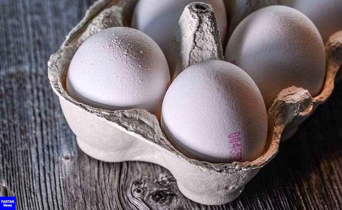 توزیع تخم مرغ با قیمت مصوب آغاز شد