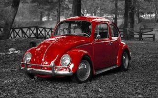 سرنوشت پر فروش ترین ماشین جهان/ فولکس قورباغه ای به تاریخ پیوست + فیلم