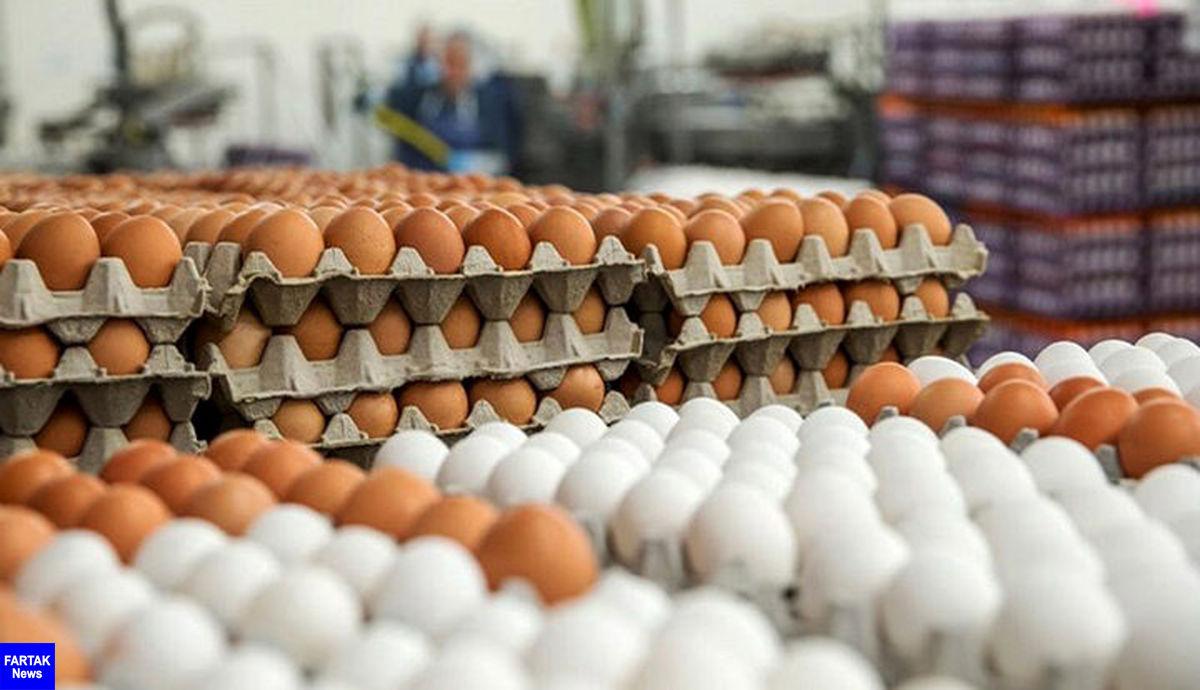 افزایش دوباره قیمت تخم مرغ