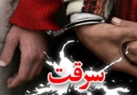 دستگیری ۶ سارق در اجرای طرح پیشگیری از سرقت