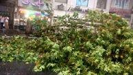 قطعی برق 84 روستای استان گلستان برطرف شد