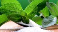 گیاهی مفید برای دیابتیها