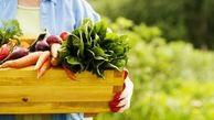 چه محصولاتی ارگانیک هستند؟