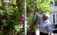 مردی که پس از ۴۰ سال تلاش، حیاط خانهاش را به بهشت تبدیل کرده است
