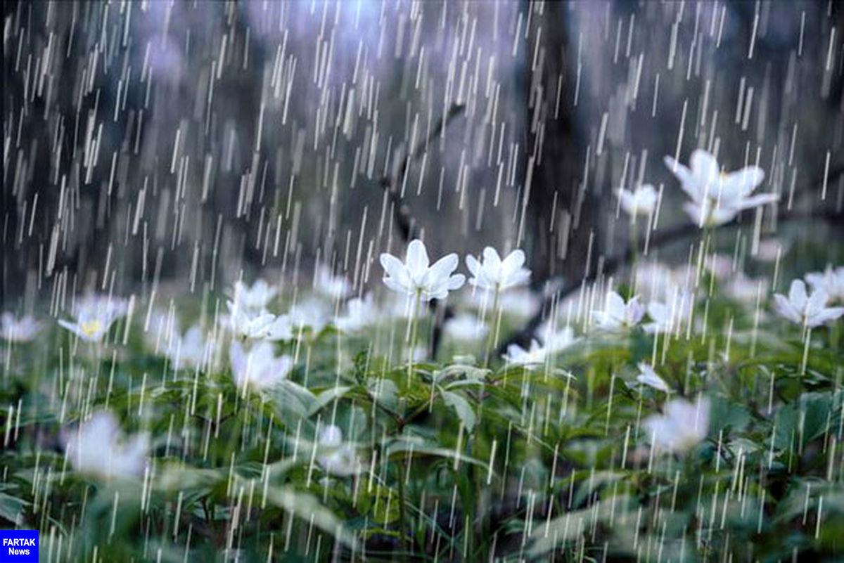 ورود سامانه بارشی جدید/احتمال سیلابی شدن مسیل ها