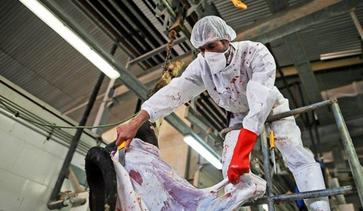چرایی گران شدن قیمت گوشت؟!