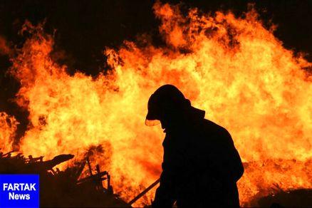 تلاش برای مهار آتش سوزی جنگلهای گچساران ادامه دارد