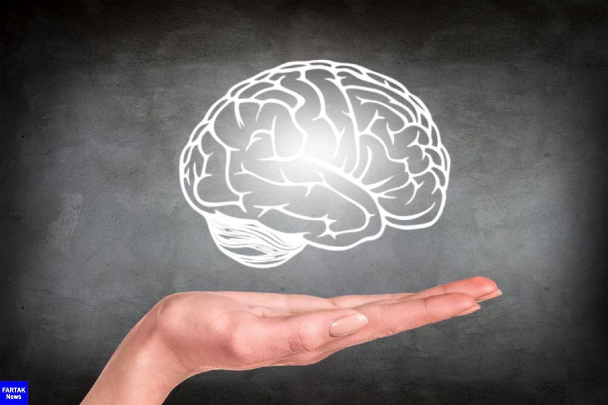 ورزش راهکار اصلی افزایش اکسیژن مغز